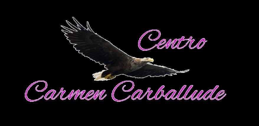 Centro Carmen Carballude